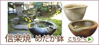 """信楽焼き水鉢"""""""