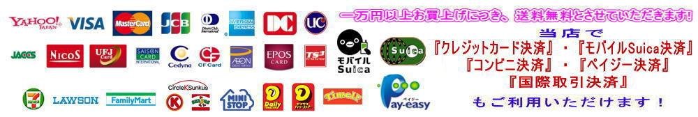 クレジットカード決済・モバイルSuica決済・コンビニ決済・ペイジー決済・国際取引決済」