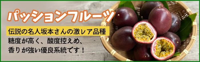 パッションフルーツ(紫系)