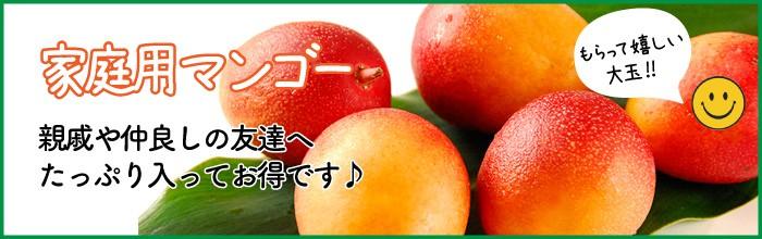 家庭用マンゴー