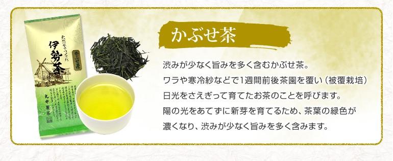 かぶせ茶 陽の光をあてずに新芽を育てるため、茶葉の緑色が濃くなり、渋みが少なく旨みを多く含みます。