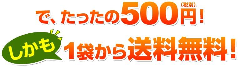 で、たったの500円ポッキリ