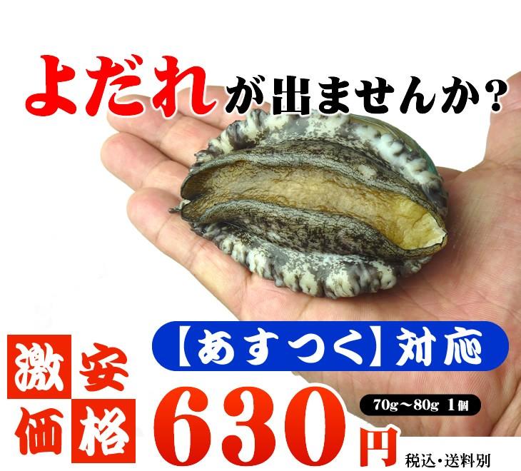 鮮度抜群!!活きてるアワビ 70g〜80g 1個 580円 ・送料別 あすつく対応