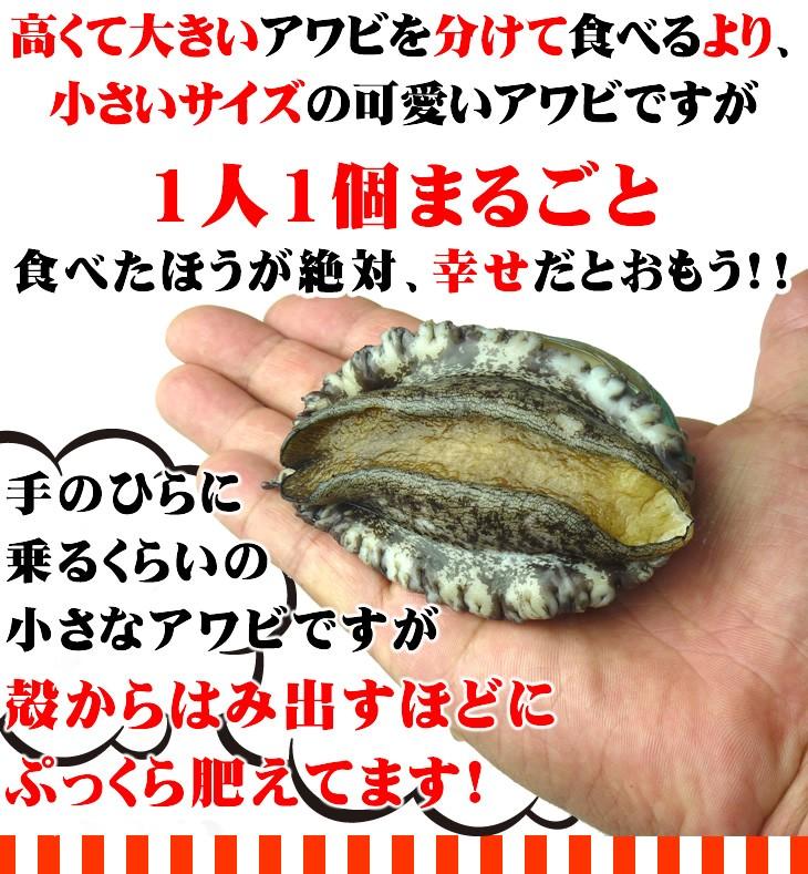 高くて大きいアワビを分けて食べるより、小さいサイズの可愛いアワビですが1人1個まるごと食べたほうが絶対、幸せだとおもう!!手のひらに乗るくらいの小さなアワビですが殻からはみ出すほどにぷっくら肥えてます!