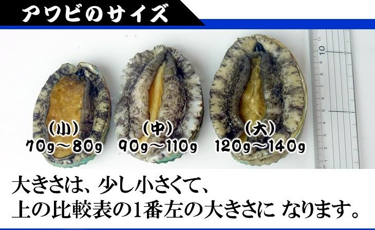 アワビのサイズ(小)70g〜80g、(中)90g〜110g、(大)120g〜140g