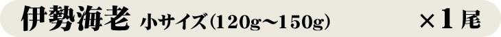 伊勢海老小サイズ(120g〜150g)×1尾