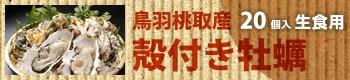 鳥羽桃取産 殻付き牡蠣/20個入(生食用)