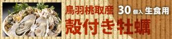 鳥羽桃取産 殻付き牡蠣/30個入(生食用)