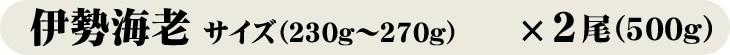 伊勢海老/サイズ(230g〜270g)×2尾(500g)