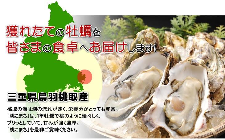 獲れたての牡蠣を皆さまの食卓へお届けします!/三重県鳥羽桃取産−桃取の海は潮の流れが速く、栄養分がとっても豊富。「桃こまち」は、1年牡蠣で桃のように瑞々しく、プリっとしていて、甘みが強く濃厚。「桃こまち」を是非ご賞味ください。