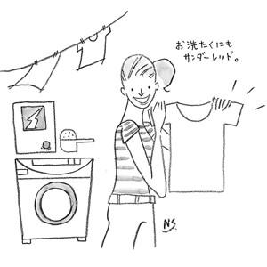 本宮石鹸 サンダー・レッド純粉石鹸