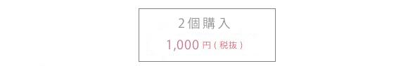 2個購入 送料無料1,000円(税抜)