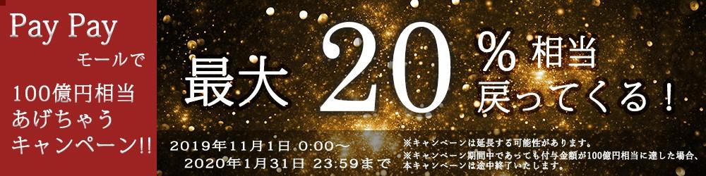 ペイペイ100億円キャンペーン