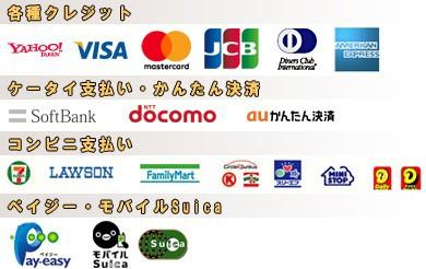クレジット、コンビニ支払い、ペイジー、モバイルスイカ、代引 e-コレクト