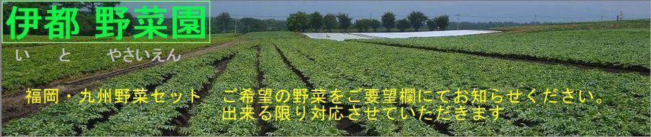 全国どこにでも福岡の新鮮野菜をお届します。