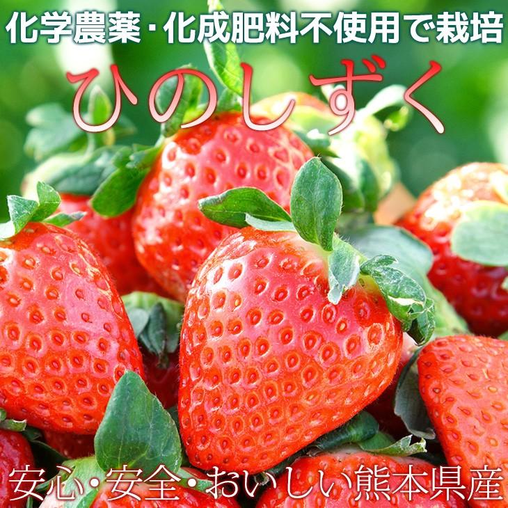 化学農薬不使用 化学肥料不使用 有機肥料で栽培したいちご