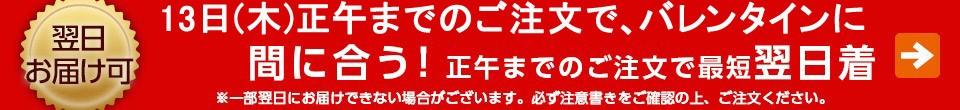 3999円送料無料