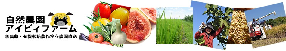 食べて健康になる無農薬・有機栽培の農作物を農園より直送!