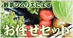 野菜ソムリエによるお任せセット