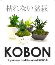 KOBON盆栽