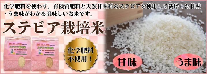 ステビア栽培米
