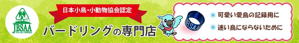 愛する小鳥が迷子になる前にバードリングを付けましょう。日本小鳥・小動物協会(JBSAA)は小鳥の個体識別を進めてまいります。