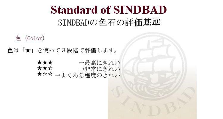 SINDBADの評価基準