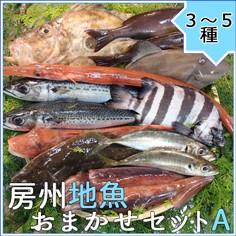 房州地魚お任せセットA