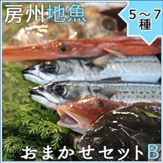 房州地魚お任せセットB
