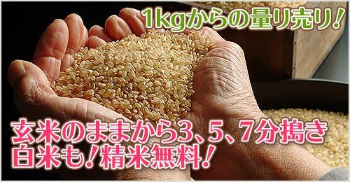 1kgからの量り売り!玄米のままから3、5、7分搗き、白米も!精米無料!