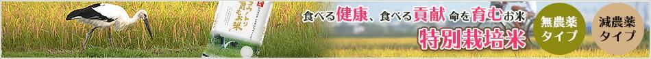 食べる健康、食べる貢献  命を育むお米  特別栽培米 ・無農薬タイプ ・減農薬タイプ
