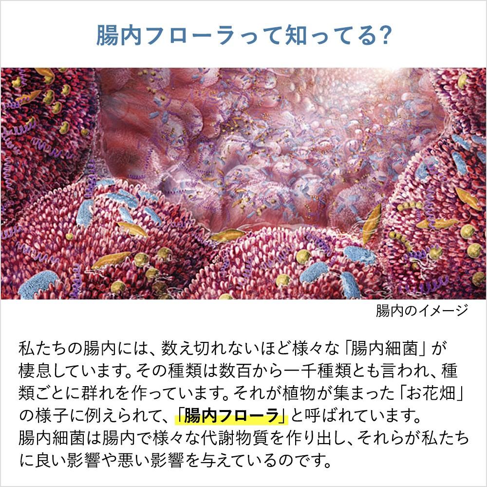 腸内フローラって知ってる? 私たちの腸内には、数え切れないほど様々な「腸内細菌」が棲息しています。その種類は数百から一千種類とも言われ、種類ごとに群れを作っています。それが植物が集まった「お花畑」の様子に例えられて、「腸内フローラ」と呼ばれています。腸内細菌は腸内で様々な代謝物質を作り出し、それらが私たちに良い影響や悪い影響を与えているのです。