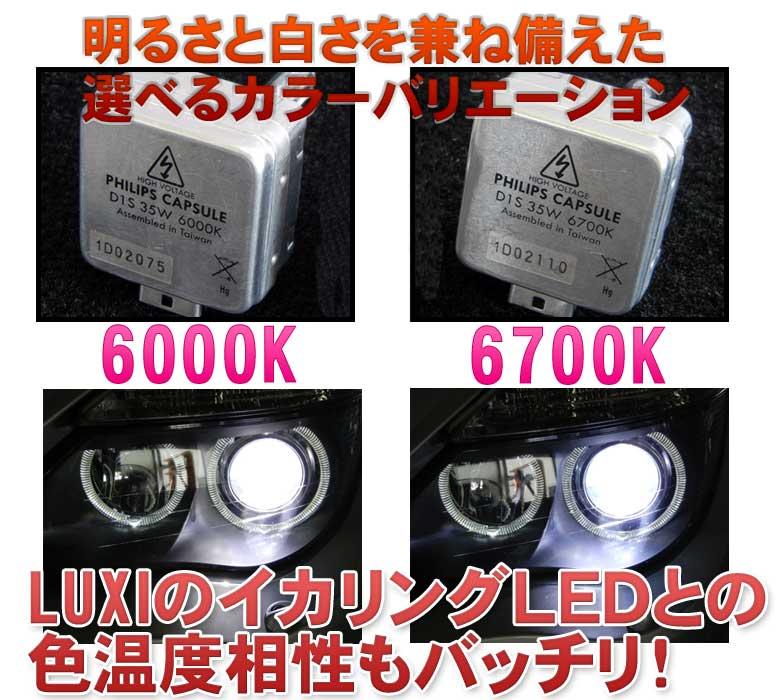 明るさと白さを兼ね備えた選べるカラーバリエーション LUXIのイカリングLEDとの色温度相性もバッチリ