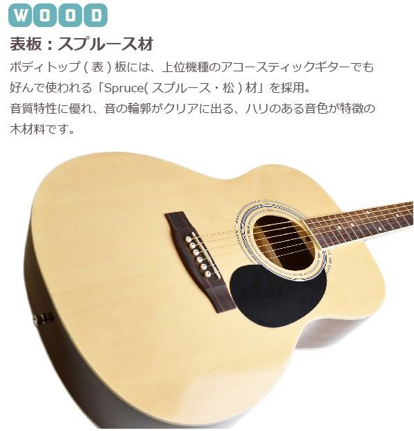 セピアクルーアコギ fG-10 詳細