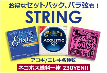 アコギ クラシックギター エレキギター エレキベース 弦