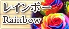 サボンフラワー自由花ヤフー店:レインボー・虹色