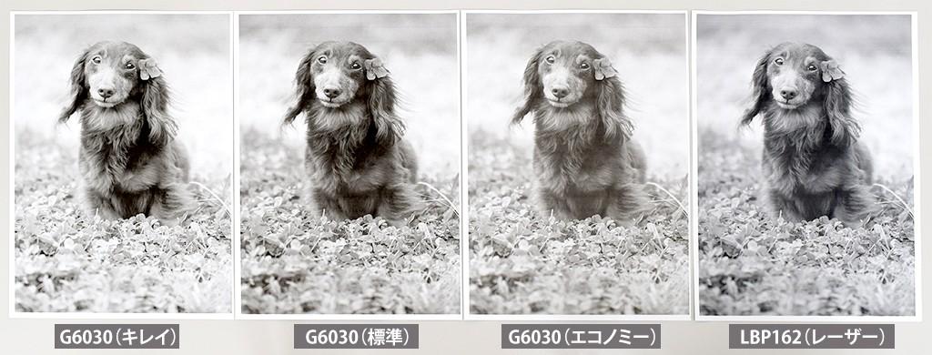写真データ モノクロ印刷