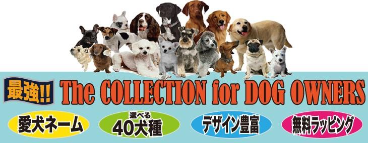 愛犬の名入れが出来るJストアドッグ商品案内タイトル