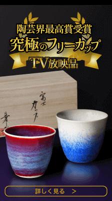 陶芸界最高賞受賞究極のフリーカップ