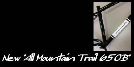 All Mountain Trail 650B
