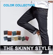 THE SKINNY STYLE