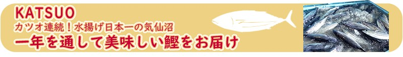 連続かつお水揚げ日本一の気仙沼から