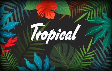 ◆トロピカル柄特集◆夏の定番トロピカル柄、今季も新作続々!!