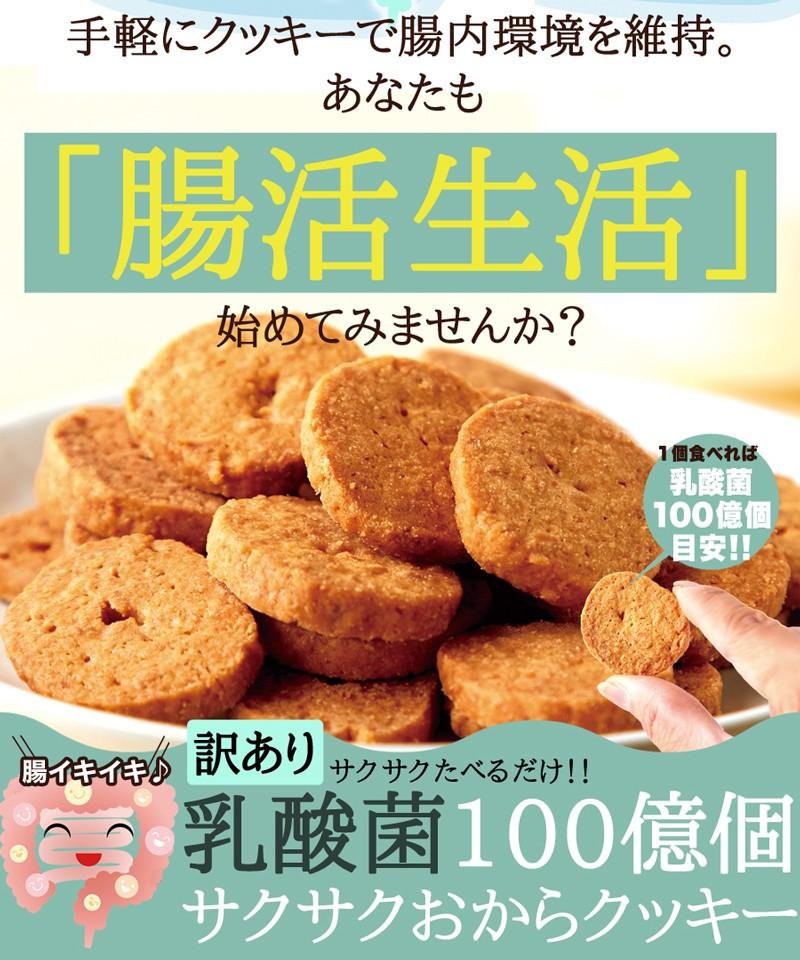乳酸菌 サクサクおからクッキー 乳酸菌 腸内環境 改善 大容量 腸活 腸内フローラ ダイエット 腸内 おからクッキー ダイエット食品 おから 腸内フローラダイエット 訳あり 食物繊維 クッキー 健康
