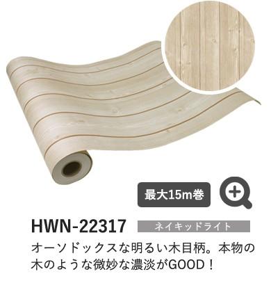 ネイキッドライト HWN-22317