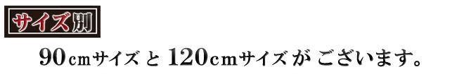 奥深 ダブルスライド本棚 幅120cmワイドデラックス