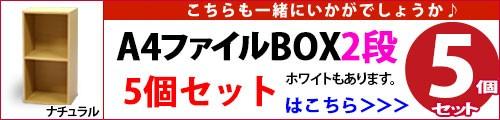 A4ファイルBOX2段(5個セット)