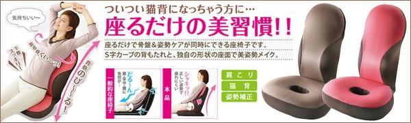 勝野式 美姿勢習慣 座るだけで骨盤&姿勢ケア 座椅子