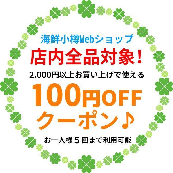 ★全品対象★100円OFFクーポン!