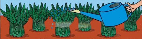 天然の植物活力液! ラッパ木酢液 1500ml 【ガーデニング・園芸・肥料】